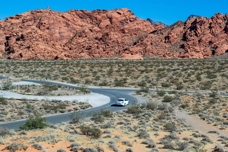 creditor claim Nevada trust