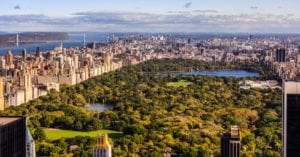 surviving spouse rights new york