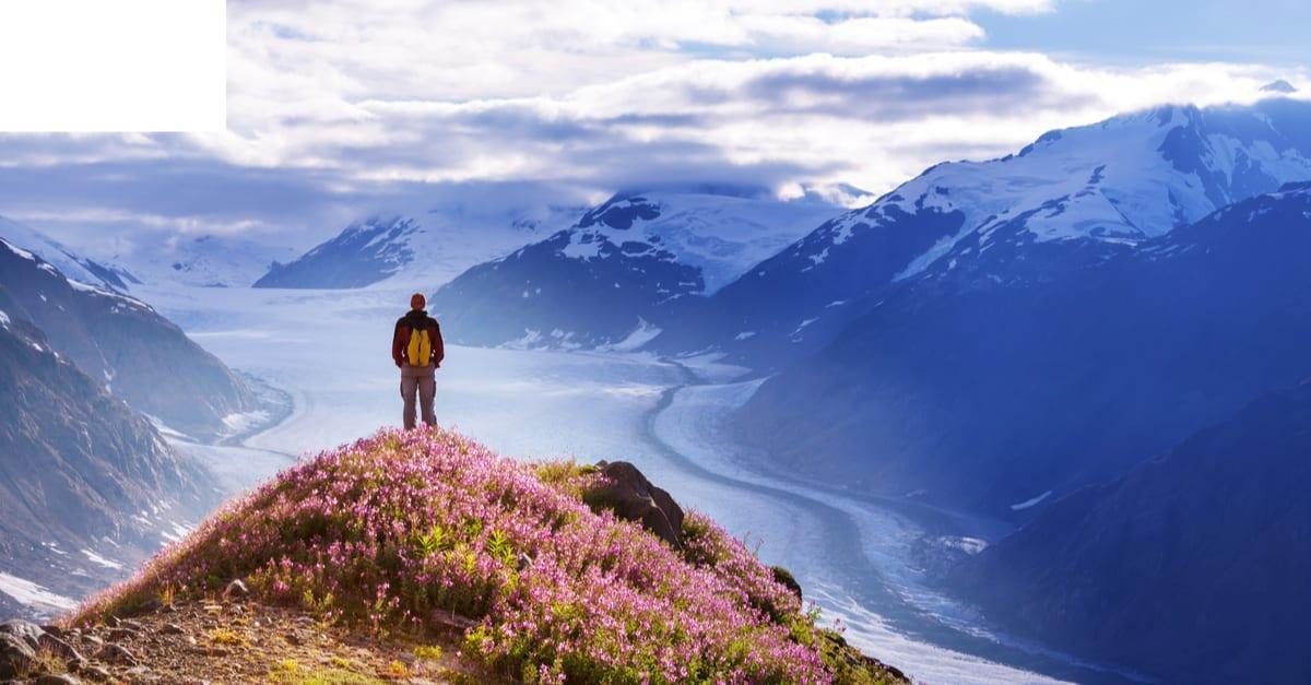 valid will Alaska