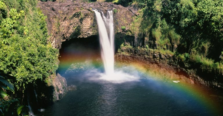 surviving spouse rights Hawaii