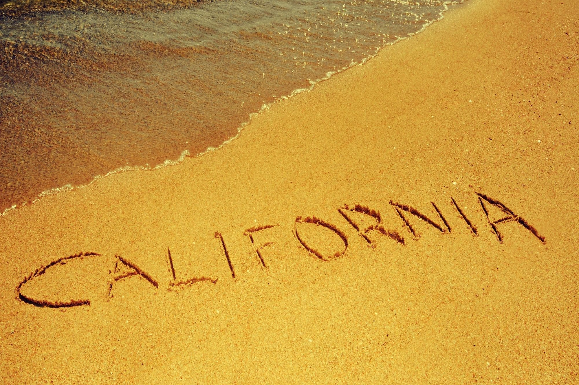 can I appeal a California probate decision