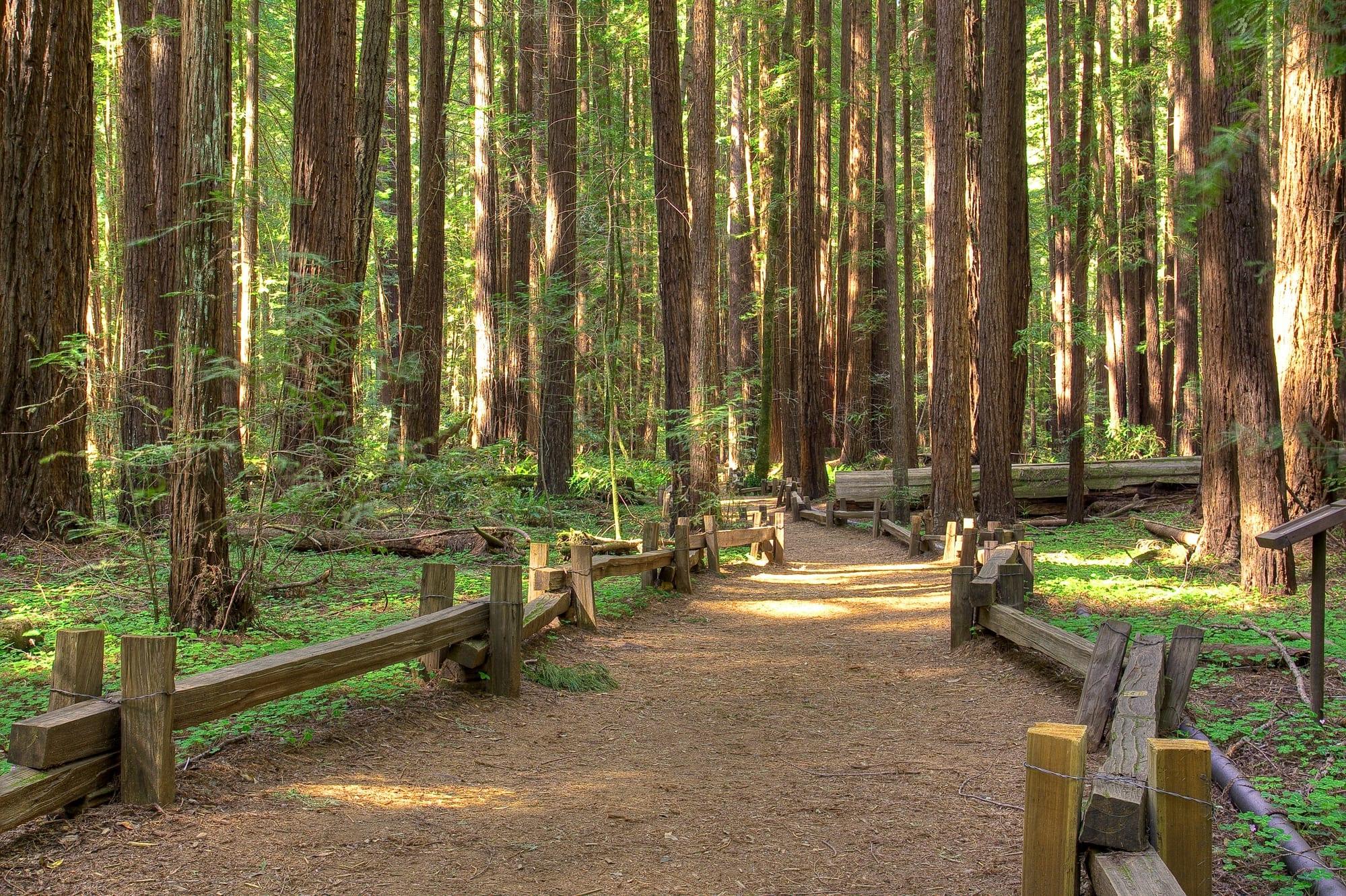 California community property probate