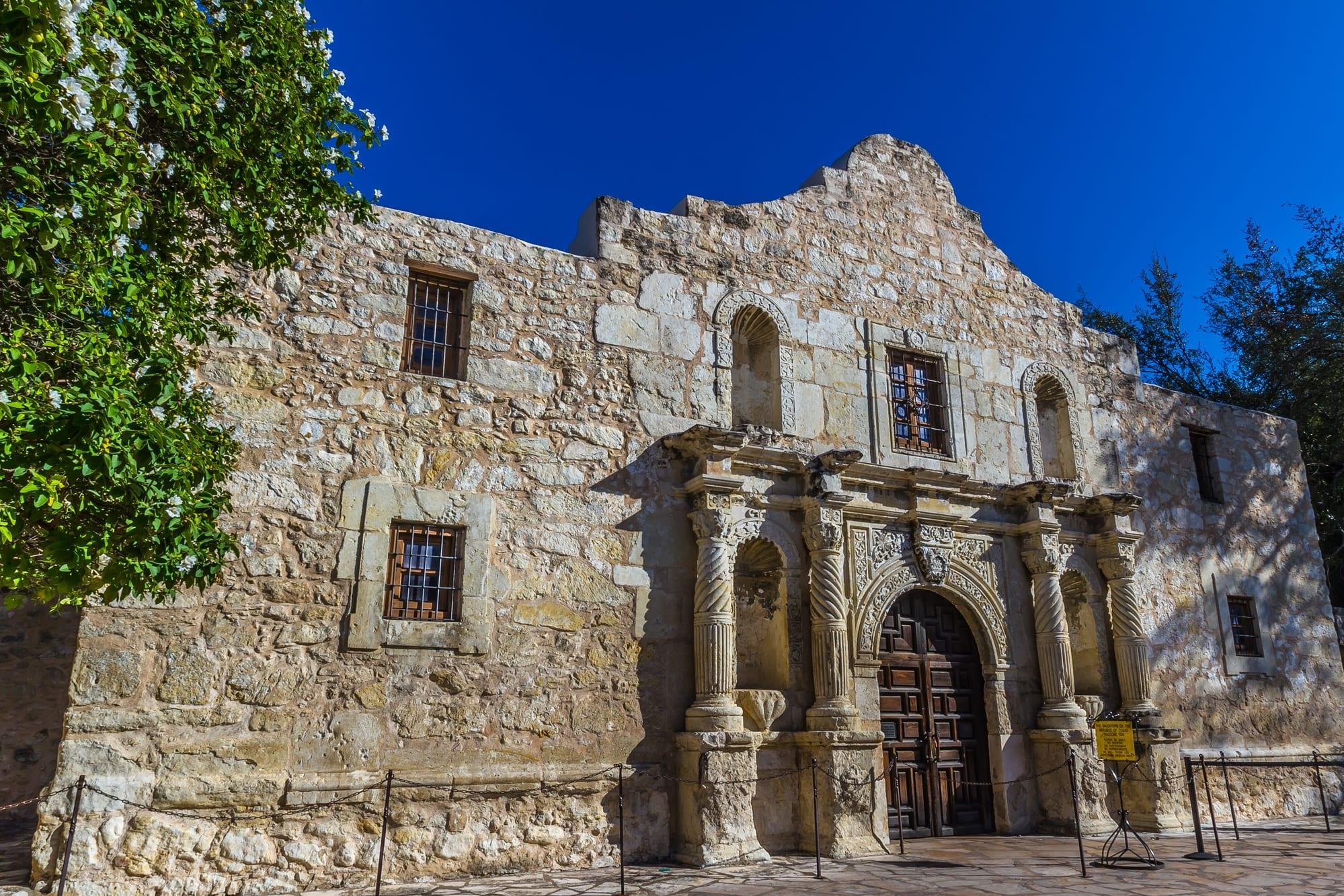 Texas trust protector fiduciary