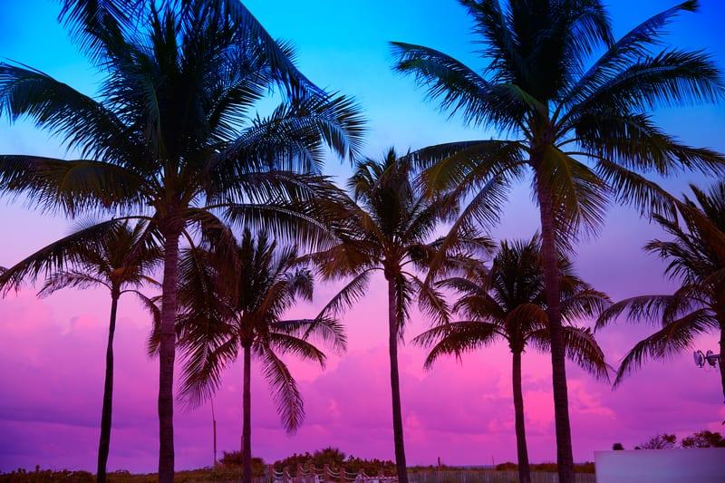 Florida undue influence proof